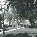 Bridgewater College, Students walking from Alumni Gymnasium, undated by Bridgewater College
