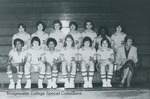 Bridgewater College, Curt Dudley (photographer), Women's basketball team portrait, 1982 by Curt Dudley