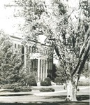 Bridgewater College, Bowman Hall through trees, undated by Bridgewater College