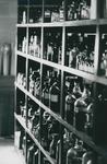 Bridgewater College, A shelf of bottles in the chemistry lab, undated by Bridgewater College