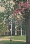Bridgewater College, Trees blooming at Cole Hall front, 2 May 1996 by Bridgewater College