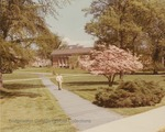 Bridgewater College, A person on a walkway near a flowering tree with Kline Campus Center in the background, undated by Bridgewater College