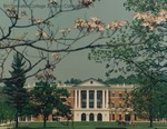 Bridgewater College, Photograph of a horse-drawn buggy passing the McKinney Center with a pink dogwood branch in foreground, 9 May 1996 by Bridgewater College