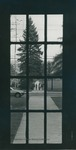 Bridgewater College, Looking out one of the Memorial Hall double doors to the the walkway in front of the Alexander Mack Memorial Library, 1980 by Bridgewater College