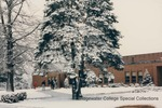 Bridgewater College, Students and a snow covered pine tree outside Nininger Hall, February 1986 by Bridgewater College