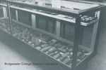 Bridgewater College, Photograph showing the lower row of the large Native American artifacts case in the Reuel B. Pritchett Museum, undated by Bridgewater College