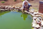 03. Managing that fish pond was not that easy. by L. Michael Hill Ph.D.